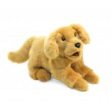 Folkmanis Folkmanis Puppet Golden Retriever Puppy