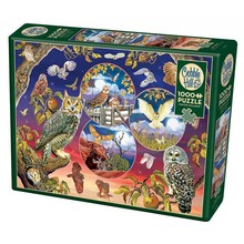 Cobble Hill Puzzles Cobble Hill Puzzle 1000pc Owl Magic