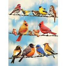 Cobble Hill Puzzles Cobble Hill Puzzle 500pc Birds on a Wire