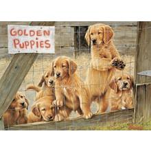 Cobble Hill Puzzles Cobble Hill Puzzle 500pc Golden Puppies