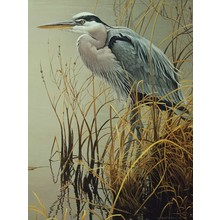 Cobble Hill Puzzles Cobble Hill Puzzle 500pc Great Blue Heron