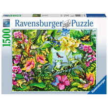 Ravensburger Ravensburger Puzzle 1500pc Find the Frogs