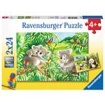 Ravensburger Ravensburger Puzzle 2x24pc Sweet Koalas and Pandas