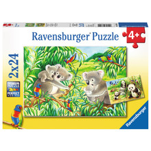 Ravensburger Ravensburger Puzzle 2x24pc Sweet Koalas and Pandas