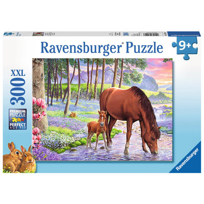 Ravensburger Ravensburger Puzzle 300pc Serene Sunset