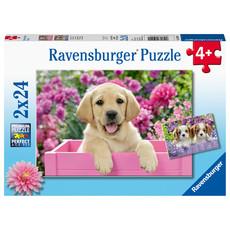 Ravensburger Ravensburger Puzzle 2x24pc Me & My Pal