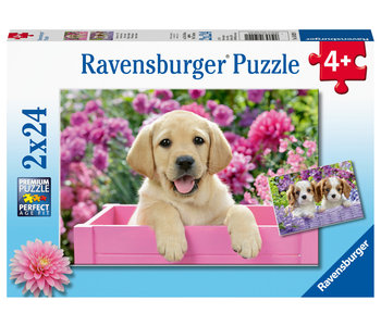 Ravensburger Puzzle 2x24pc Me & My Pal