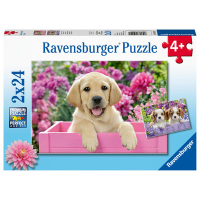 Ravensburger Ravensburger Puzzle 2x24pc Me & My Pal