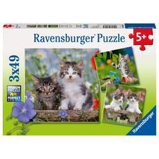 Ravensburger Ravensburger Puzzle 3x49pc Cuddly Kittens
