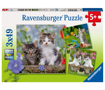 Ravensburger Puzzle 3x49pc Cuddly Kittens