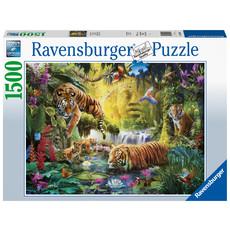 Ravensburger Ravensburger Puzzle 1500pc Tranquil Tigers