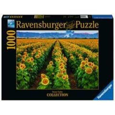 Ravensburger Ravensburger Puzzle 1000pc Fields of Gold