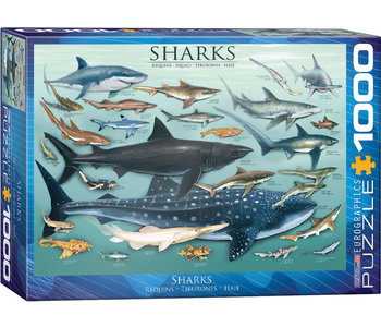 Eurographic Puzzle 1000pc Sharks