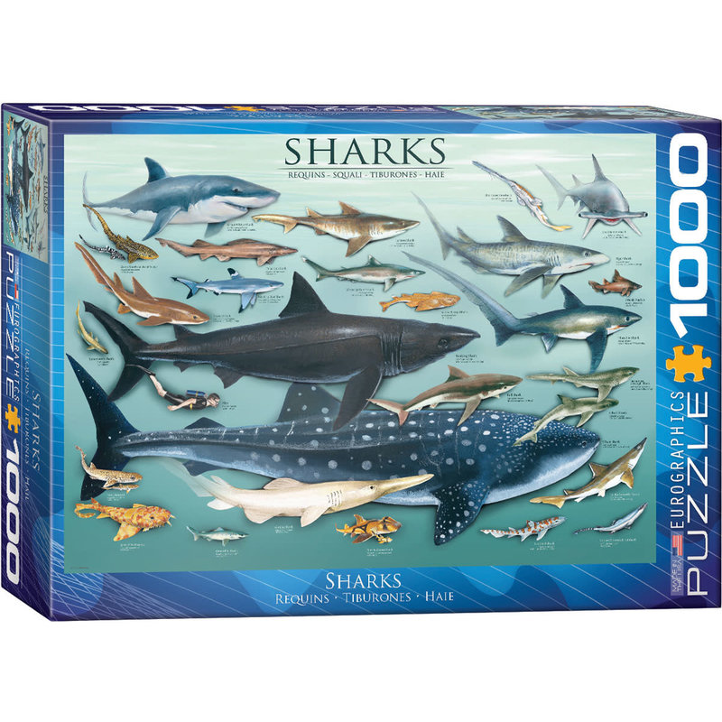 Eurographics Eurographic Puzzle 1000pc Sharks