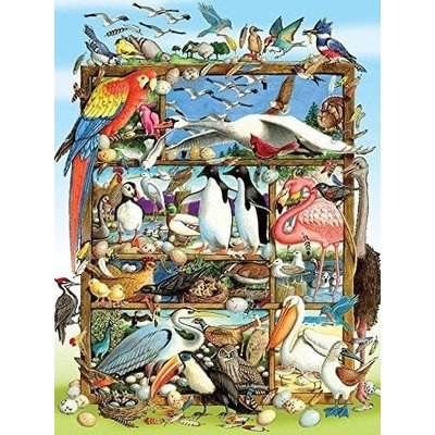 Cobble Hill Puzzles Cobble Hill Family Puzzle 350pc Birds of the World