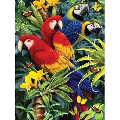 Paint by Numbers Majestic Macaws