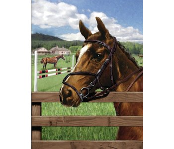Paint by Numbers Equine Paddock