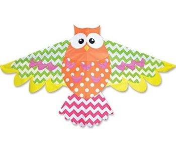 Premier Kite Bird Rainbow Owl