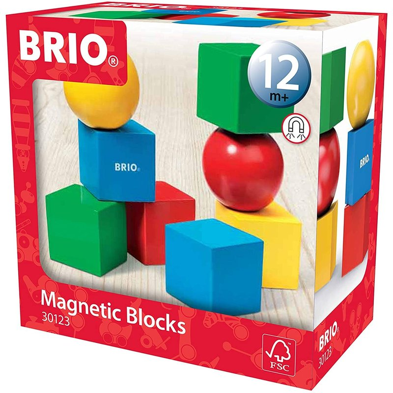 Brio Brio Magnetic Building Blocks