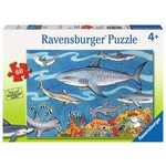 Ravensburger Ravensburger Puzzle 60pc Sea of Sharks