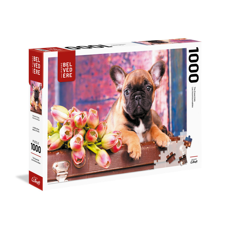 Trefl Trefl Puzzle 1000pc Romantic Dog