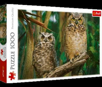 Trefl Puzzle 1000pc Night Owls