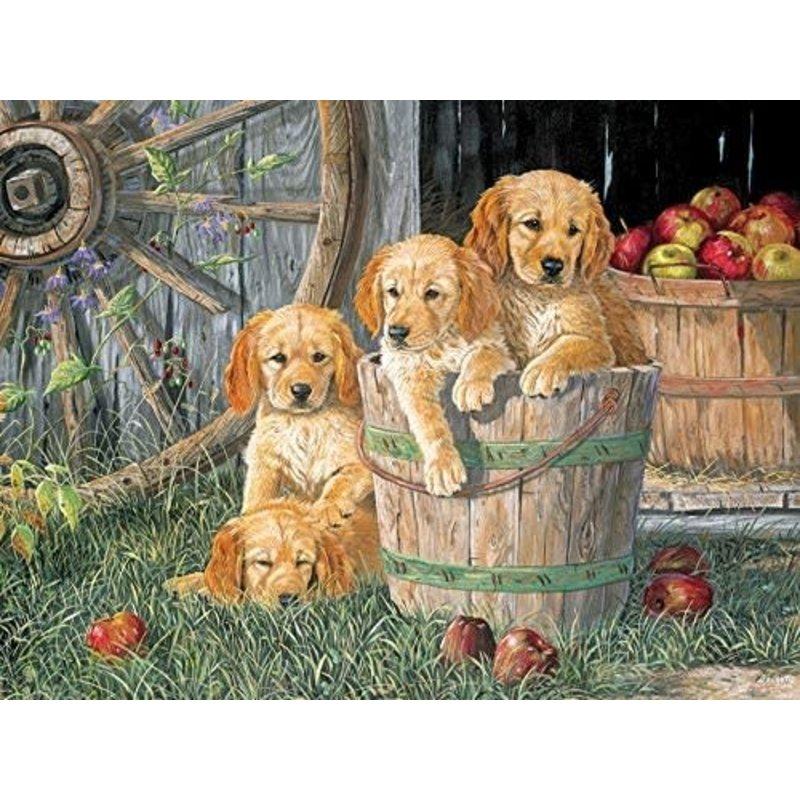 Cobble Hill Puzzles Cobble Hill Family Puzzle 350pc Puppy Pail