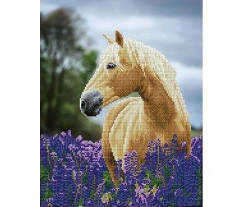 Diamond Dotz Horse in a Field