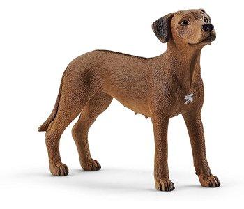 Schleich Farm World Dog Rhodesian Ridgeback