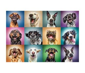 Trefl Puzzle 1000pc Funny Dog Portraits
