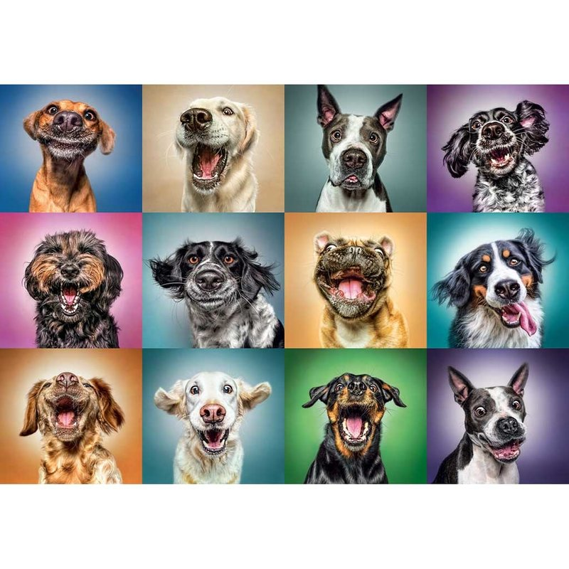 Trefl Trefl Puzzle 1000pc Funny Dog Portraits