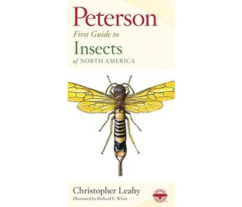 Peterson Field First Guide To Insects