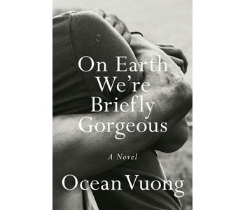 On Earth we are Briefly Gorgeous Novel