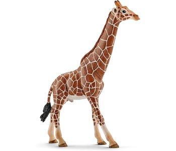 Schleich Wild Life Giraffe, male