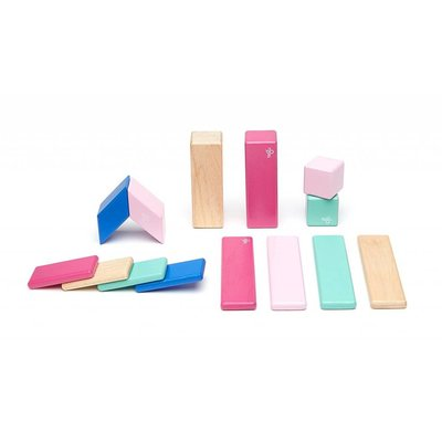 Tegu Tegu Magnetic Wooden Block 14pc Blossom