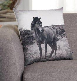 Wild Horse Cushion 45cm x 45cm