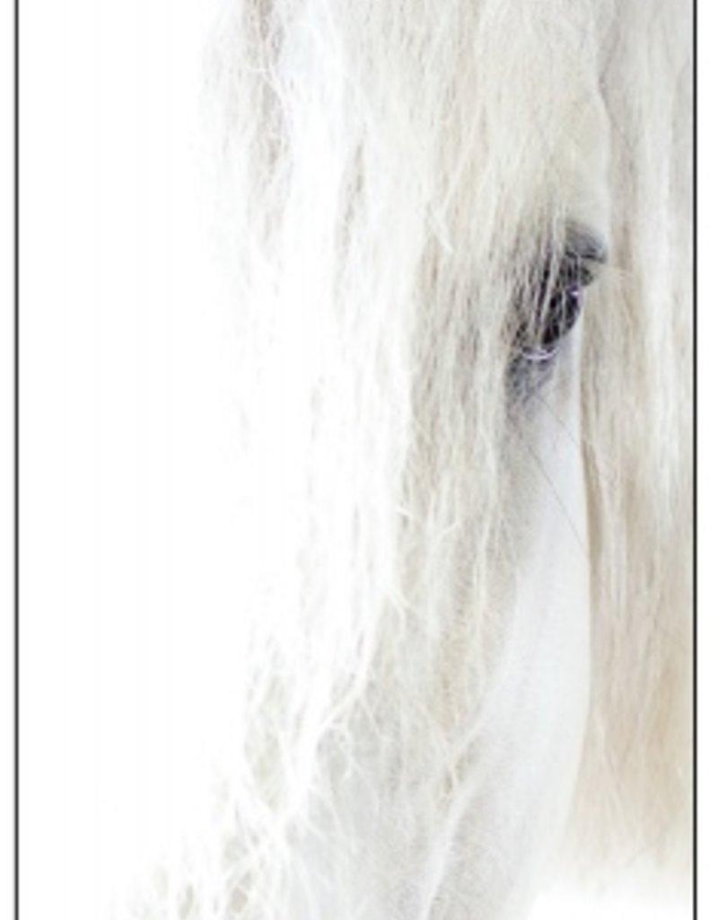 Asmar Equestrian Greeting Card