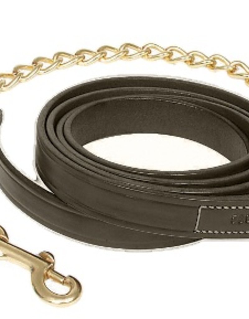 Walsh Company Inc. Leather Lead with Chain