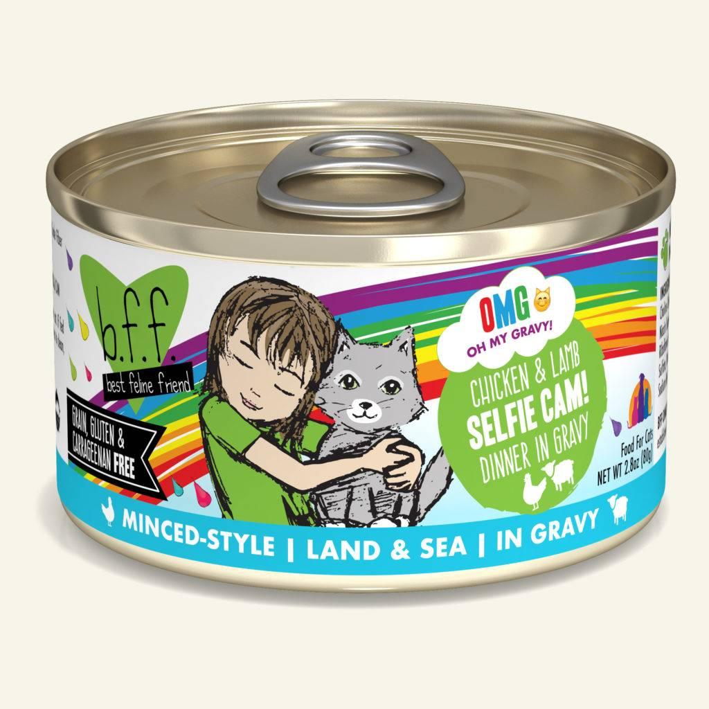 Weruva Weruva BFF OMG Chicken & Lamb Selfie Cam! Wet Cat Food