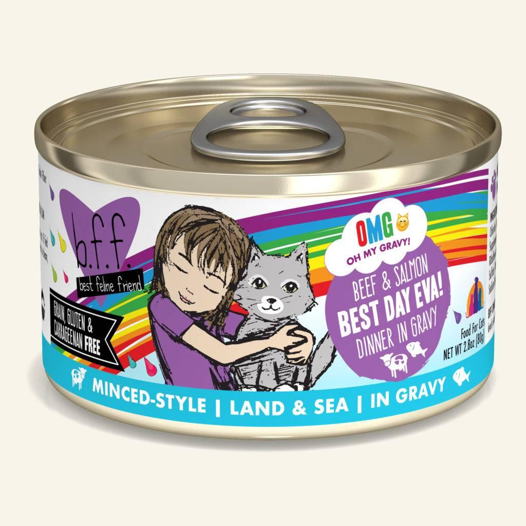 Weruva Weruva BFF OMG Beef & Salmon Best Day Eva! Wet Cat Food