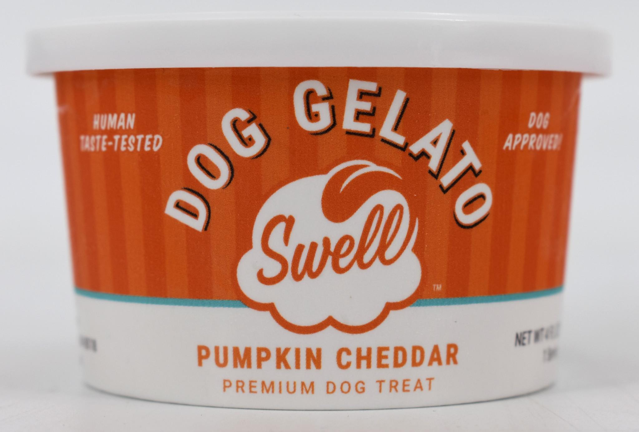 Swell Gelato Pumpkin Cheddar Frozen Dog Treat