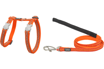 Red Dingo Designs Cat Harness & Lead Snake Eyes Orange