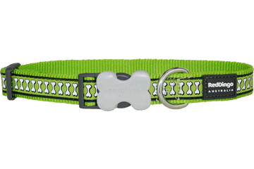 Red Dingo Reflective Dog Collar Bones Lime Green