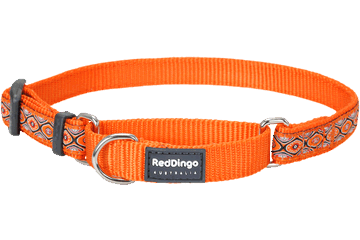 Red Dingo Red Dingo Designs Martingale Dog Collar Snake Eyes Orange