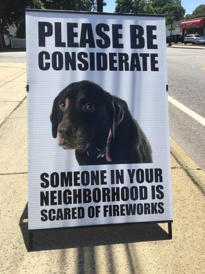 Fireworks and Your Dog.