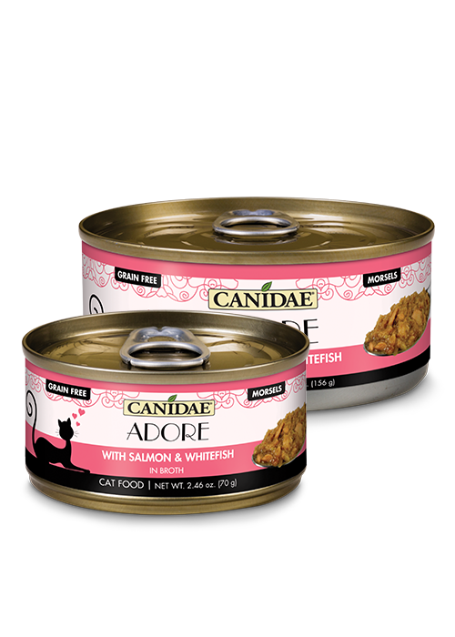 Canidae Canidae Adore with Salmon & Whitefish Wet Cat Food