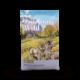 Taste of the Wild Taste of the Wild Ancient Mountain Dry Dog Food
