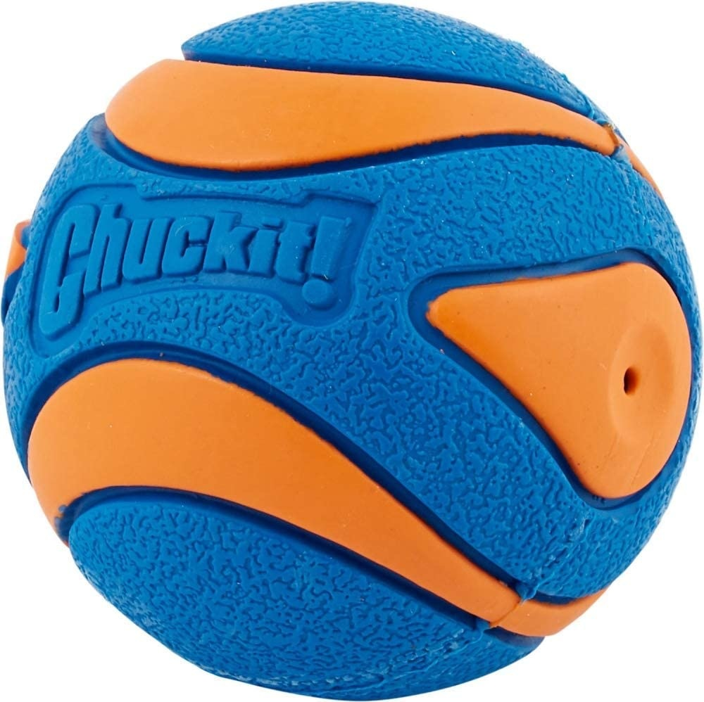 Chuck-it! Ultra Squeaker Ball Dog Toy Large