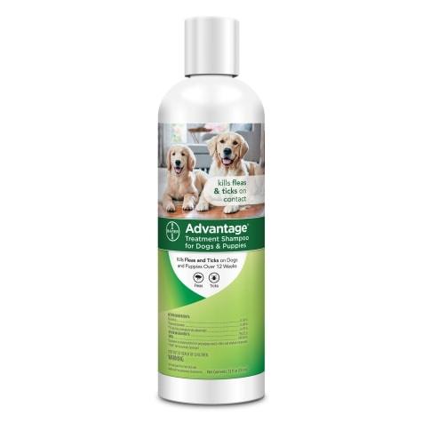 Bayer Advantage Dog Flea & Tick Shampoo 12z