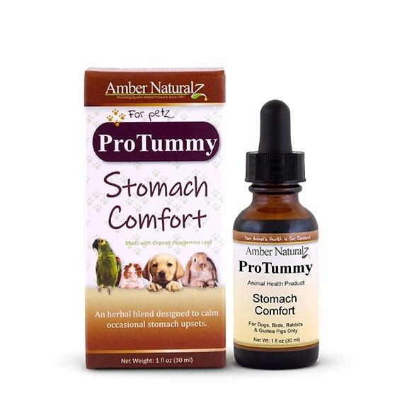 Amber Naturalz Amber Naturalz Pro Tummy Supplement 1oz